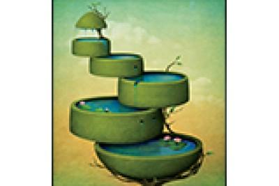 Liderliğin gelişimsel anatomisi: Liderliğin giriş, gelişme ve sonuç evreleri...
