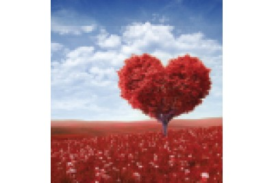 Çalışanın kalbine ve duygularına dokunmak ellerinizi yakmaz!