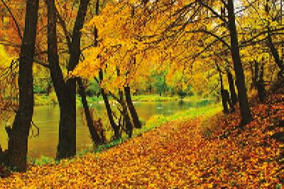 Doğanın sıcak renklerine seyahat