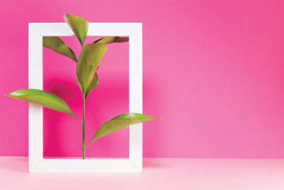 Gelişim planları gerçekten geliştiriyor mu? Gelişime yönelik kurumsal deneyimler ne diyor?